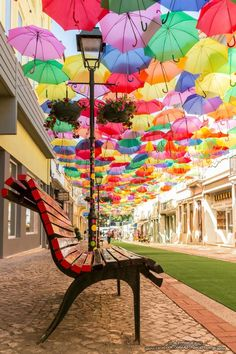 Being on Umbrella Street in Portugal = on the Bucket List Portugal Travel, Spain And Portugal, Beautiful World, Beautiful Places, Beautiful Streets, Places To Travel, Places To See, Umbrella Street, Umbrella Art
