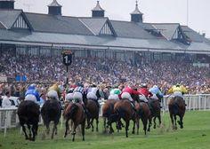 Racecourse Directory: Racecourse Info From Around The World | UK | IRE | UK…
