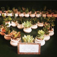 Essa semana tem mudinhas de mini suculentas viajando para a cidade de Rio Grande! É muito muito amor!!!  #lepetitvert #lembrancinhas #lembrancinhacommudinha #lembrancinhadecasamento #mudinhas #muitoamor #suculentas #suculenta #succulent #succulents #succulentlove #suculove #suculovers