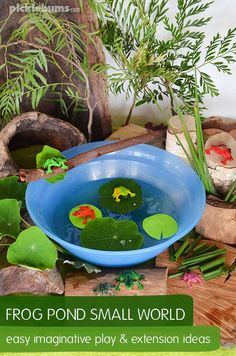 Spring is in the air water tray frogs and trays for Small frog pond ideas