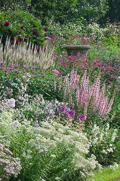 Jardin fleuri dégradé de rose