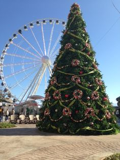 Christmas Tree at The Island in Pigeon Forge