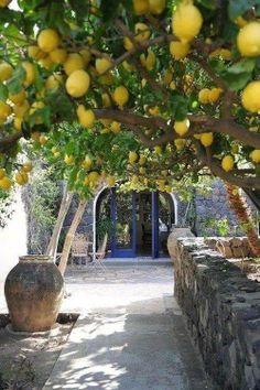 Paleokastritsa, Corfu Island. One of my favorite Greek Isles.