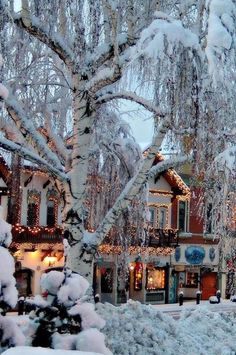 I MUST visit this charming town some day. Preferably in winter. Christmas Feeling, Cozy Christmas, Christmas Time, Country Christmas, Primitive Christmas, Outdoor Christmas, Vintage Christmas, Christmas Decor, Winter Magic