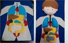 A dica de hoje mistura brincadeira com aprendizado. Veja como fazer um corpo humano de feltro para as crianças brincarem e aprenderem.