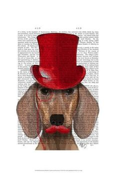 4cb0362579cc7 Art Print  Dachshund With Red Top Hat and Moustache by Fab Funky   19x13in  Wall