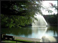 :: Bosque dos Buritis - Goiânia - GO - Brasil ::