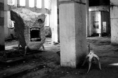 . Dreams And Nightmares, Weird Art, Nautilus, Art Blog, New Image, Creepy, Chill, Monsters, Psychotic
