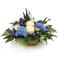 #Bloemen #Flowers #Fleurs