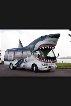 This is the OFFICIAL bus of cabin 3<<Confirmed