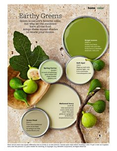 Earthy Greens  Green Paint ColorsWall ColorsPaint PalettesColor  PalettesColor StoriesPaint IdeasEarthyColor InspirationColor SchemesI am thinking about painting the living room walls this Scallion  . Green Paint Color Palette. Home Design Ideas