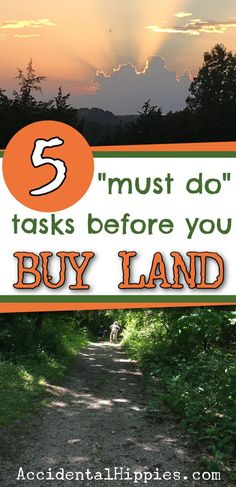How To Buy Land, Best Investments, Getting Out, You Must, Homesteading, Landing, Things To Do, Adventure, How To Plan