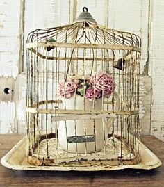 a bird cage would complete the back room... only a rusted copper colored one!