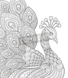 Coloring Wallpaper Of A Peacock BooksAdult