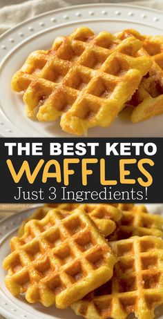 Easy Keto Chaffles Recipe (low carb waffles) made with almond flour or coconut flour. Just 3 ingredients! This quick and easy keto breakfast idea is soon going to be your new favorite! It's simple, low carb, ketogenic friendly, grain free, gluten free and Keto Waffle, Waffle Recipes, Bread Recipes, Low Calorie Waffle Recipe, Egg Waffle Recipe, Cake Recipes, Low Carb Keto, Low Carb Recipes, Easy Keto Recipes