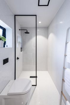 In-wall toilet to make the bathroom bigger (if the toilet doesn't go in the shower)