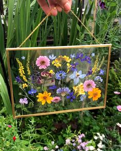 Hanging Double Glass Pressed Flower Brass Frame On The Chain Floating Herbarium Frame Floating Pressed flower frame Pressed Flowers Frame, Dried And Pressed Flowers, Pressed Flower Art, Flower Frame, Flower Wall, Dried Flowers, Frame With Flowers, Flowers In Water, Flower Room