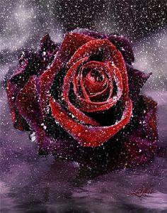 Çiçekler,Çiçek gifleri,harika güller, ışıl ışıl gül resimleri, çiçek gifleri, harika çiçek gifleri, ışıltılı çiçek gifleri, en güzel çiçek gifleri burada, gül güzellikleri, hareketli gül resimleri, yeni gül gif resimleri - Romantik resimler, Smileyler, Gifler, Gül Resimleri, Travel Guide, Tatil Merkezleri, Oteller, Hotels, Türkiyede Tatil, Türkiyenin en büyük resim sitesi