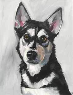 """Daily Paintworks - """"Black and White Dog"""" - Original Fine Art for Sale - © Katy O'Connor"""