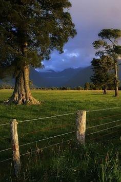 Farm Charm by Nayara Volpe