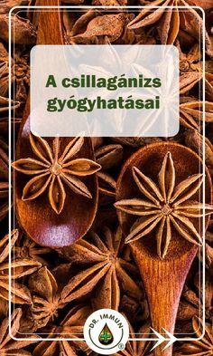 Medicinal Plants, Doterra, Planting Flowers, Herbalism, Herbs, Baking, Healthy, Food, Herbal Medicine