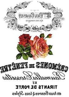 rózsa neill fogyás