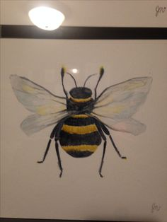 Bee. Watercolour