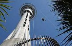 The most adventurous New Zealand's highest Base Jumping by wire Backpacker Deals.   #newzealand #skyjump #traveldeals #travelphoto