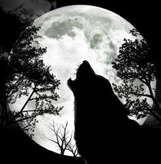 Wolf Howling Black And White Drawing, Best Howling wolf tattoo . Wolf Tattoos, Animal Tattoos, Celtic Tattoos, Wolf Und Mond Tattoo, Tattoo Mond, Howling Wolf Tattoo, Wolf Howling, Wolf Tattoo Sleeve, Tattoo Arm