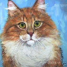 Original Maine Coon Tabby Cat Painting Ginger White Longhair Kasheta Art | eBay