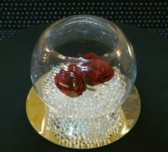 Fish Bowl - Centre Piece - By Vikki - At Sapphire Bespoke Events, 59 Poulton Road, Wallasey, Wirral