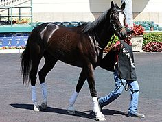 March 9, 2014 - Honor Code Gets Tightener for Seasonal Debut