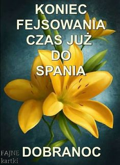 Weekend Humor, Flower Aesthetic, Motto, Good Night, Memes, Funny, Pictures, Internet, Frases