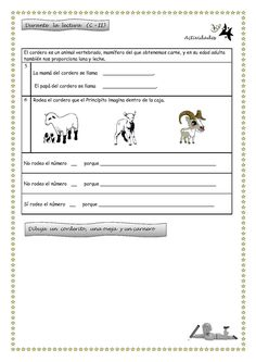 Publishing platform for digital magazines, interactive publications and online catalogs. Cooperative Learning, The Little Prince, Digital Magazine, Artists, Christmas Dresses For Girls, Reading Workshop, Fourth Grade, School, Activities