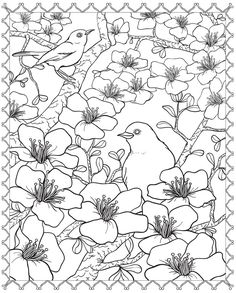 """Wonderful Cherry Blossom and Birds Coloring Page. A Preview from the 3-D Coloring Book """"Floral Designs"""". ✏Dover Publications."""