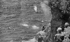 Banzai Cliff is the site of numerous suicides by Japanese civilians and Japanese soldiers, towards the end of the Battle of Saipan in WWII. Hundreds committed suicide, by jumping to their deaths, rather than be captured by the Americans.
