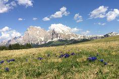 Wandern in Südtirol: Die besten Touren für Einsteiger Mount Everest, Mountains, Nature, Travel, German, Europe, Road Trip Destinations, Italy, Destinations