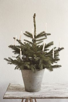 charming little tree with candles - so much nicer than a Christmas tree full of stuff :-)