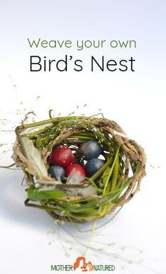 How to make a bird nest