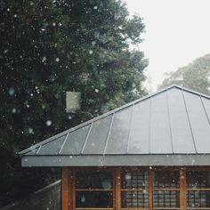어제는 눈이 퐁퐁 내리더니 오늘은 쨍하니 맑다 by kkong397
