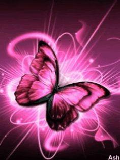 ButterflyPink.gif~original 240×320 pixels