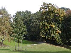 Donnerspark in Altona