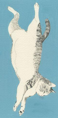 Illustration by Midori Yamada                                                                                                                                                     More #CatIllustration