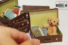 Nao Colle - teddy bear in a  suitcase