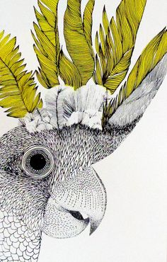 Print Club London – Cockatoo by Hannah O'Hare Another piece with some really beautiful line work. The textures look incredible, the drawing is rendered in an amazing way, and the pop of chartreuse really gives the bird an exotic feel. Art Shed, Graffiti, Bird Artwork, Tropical Art, Bird Illustration, Cockatoo, Art Plastique, Illustrators, Art Drawings