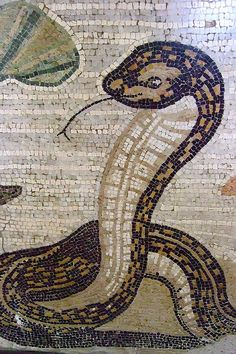 Cobra Detail from Mosaic depicting a Nilotic scene from the House of the Faun in Pompeii Roman 2nd century BCE - 79 CE by mharrsch, via Flickr
