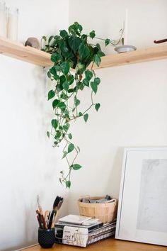 Bureau avec tablettes de bois