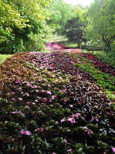 Sissi's garden. Merano - Italy