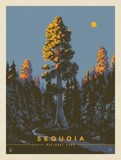 National Park Posters, National Parks, Document Iconographique, Nature Posters, Retro Poster, Kunst Poster, Sequoia National Park, Park Art, Poster Prints