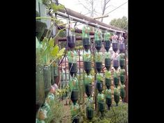 This is showing how I made my hanging disposable bottle gardens. I didn't use any power tools so it is very simple to construct. I don't have a large outdoor...
